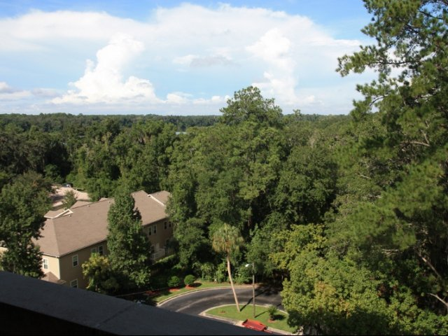 Image of Balcony View for Lakeshore Towers