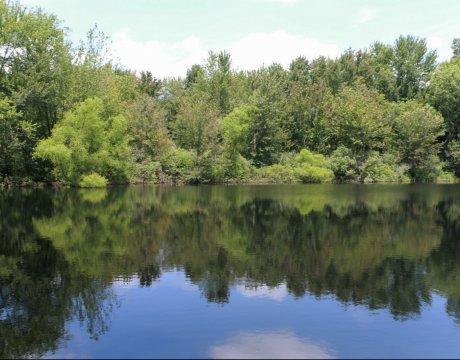 Greenleaf Hunters Pond