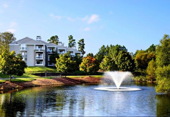 Mission University Pines