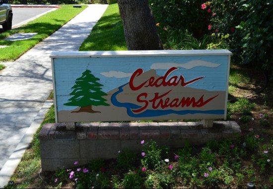 Cedar Streams