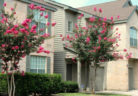 Chartwell Court Apartments Rentals in Houston Texas