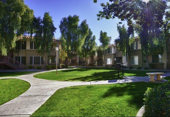 Vista Grove