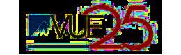 Vue 25 Logo