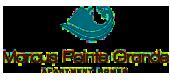 Marcus Pointe Logo