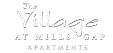 The Village at Mills Gap