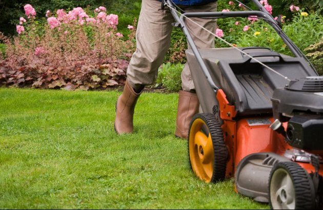 Whether it's basic lawn maintenance or complete yard renovation that your looking for, we offer wide variety of options to fit your budget.