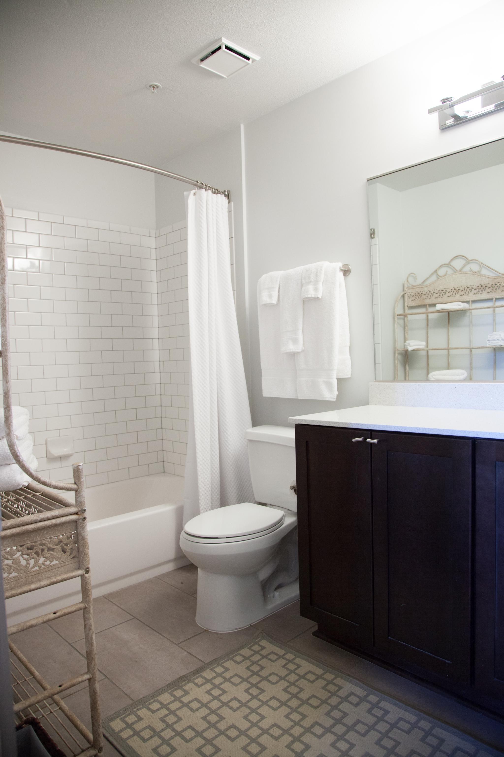 Metro Subway Backsplash Bathroom - DH Holmes