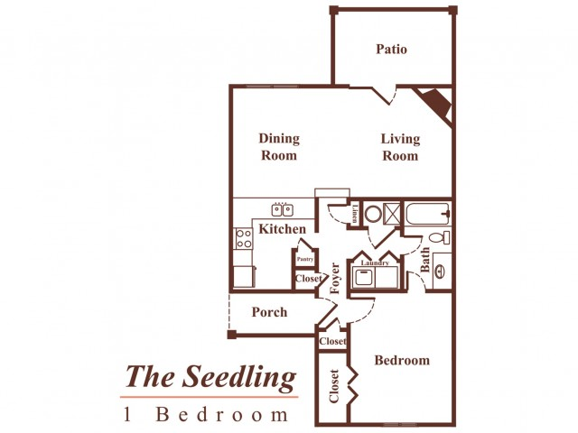 The Seedling