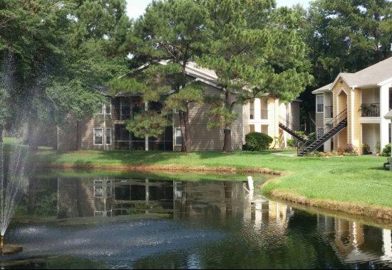 pond, apartments