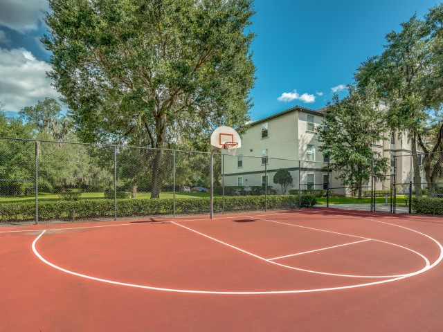 Image of Basketball Court for Sanctuary at Highland Oaks