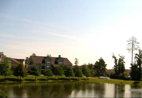 Spring Lake Apartments