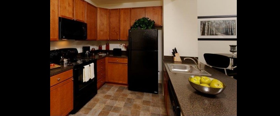 Kitchen and modern applainces of Reisterstown, MD apartments