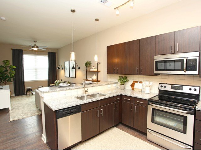 Image of Designer Kitchens for 757 North Apartments