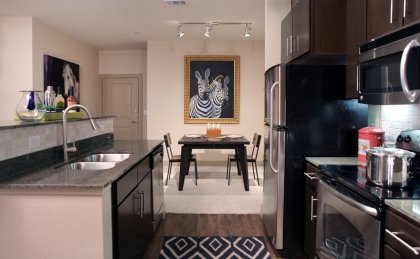 Modern kitchen of our apartments in Odessa, TX near UTPB
