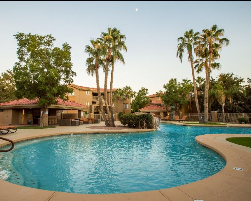 The Palms on Scottsdale