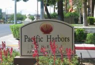 Pacifica SD Management