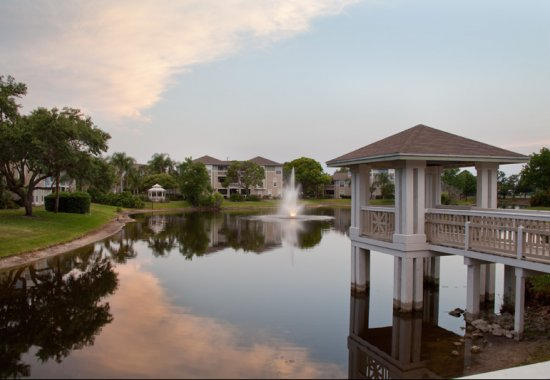 pond at Palm Cove of Bradenton apartments for rent in Bradenton FL