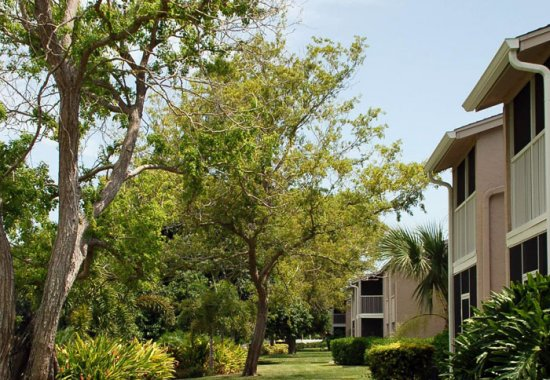 Arbor-like environment at our apartments for rent in Bradenton Florida