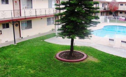 Courtyard Plaza