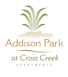 Addison Park Apartments in Tampa, FL 33647