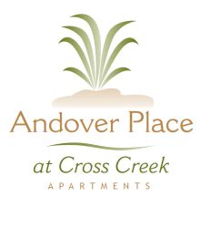 andover place apartments in tampa fl 33647