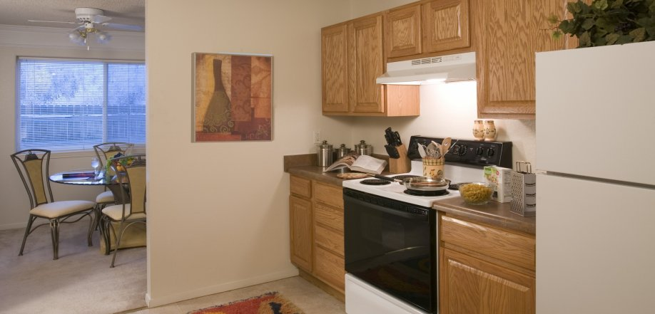 picture of apartment kitchen