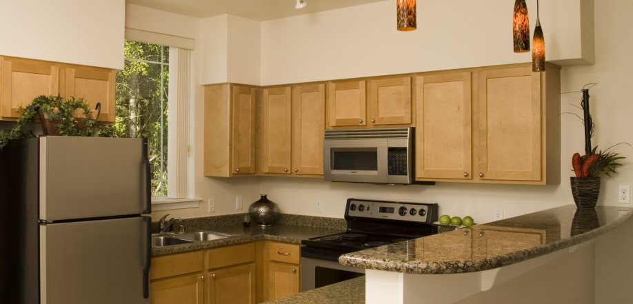 picture of gourmet apartment kitchen with granite counter