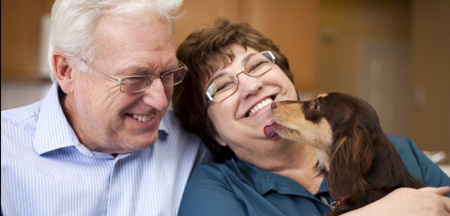 pet friendly apartment community