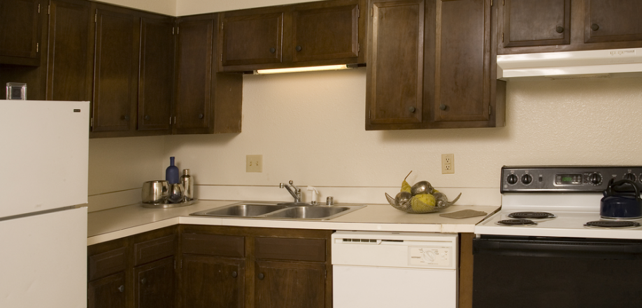picture of apartment kitchen refrigerator stove dishwasher