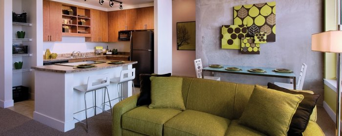 Skyline Lofts Apartment Homes