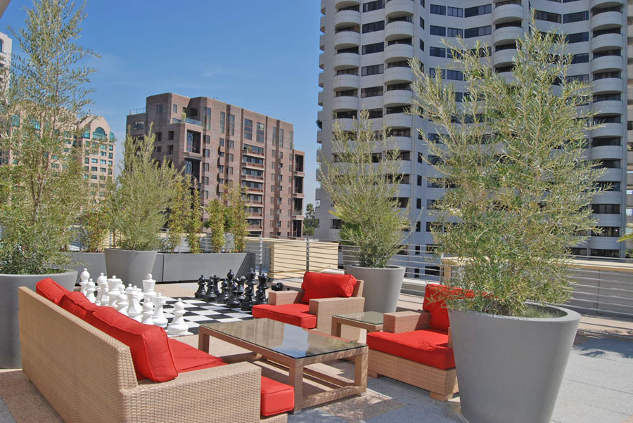 Red-Hot Westwood Apartments for rent