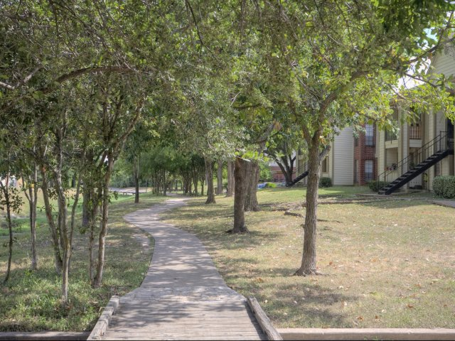 Arbors of Wells Branch Apartments for Rent in Austin, TX | Trees in Courtyard