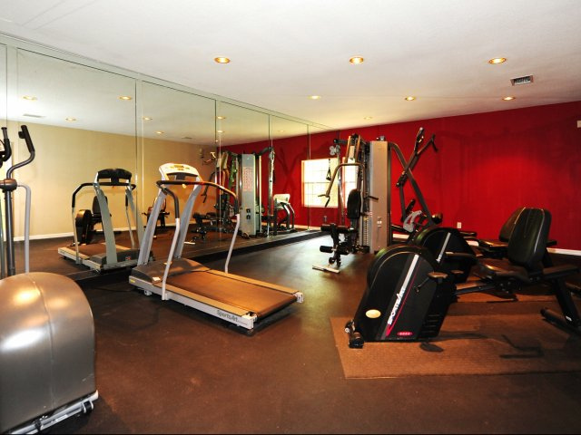 Oak Ramble   Apartments For Rent in Tampa, FL   Fitness Center