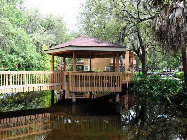 Oak Ramble | Apartments For Rent in Tampa, FL | Tropical Gazebo