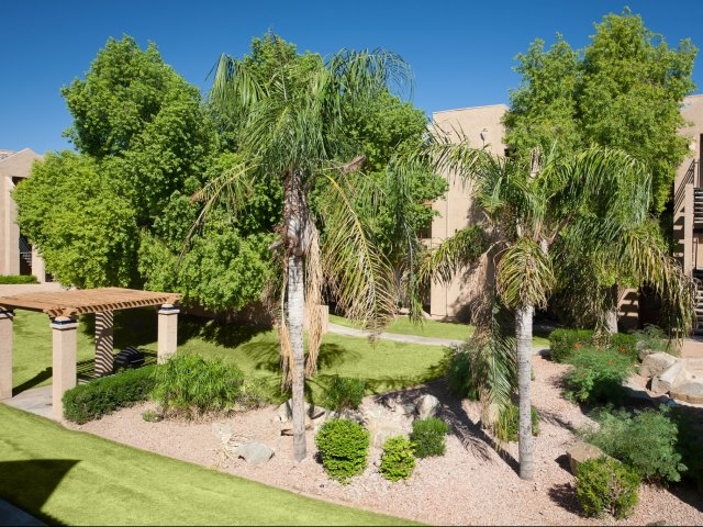 Meadow Glen | Apartments For Rent in Glendale, AZ | Pet Friendly Courtyard