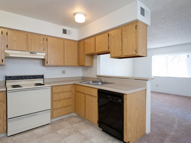 Terra Vida Apartments for Rent in Mesa, AZ | Kitchen Appliances and Counter