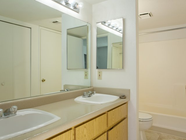 Terra Vida Apartments for Rent in Mesa, AZ | Bathroom