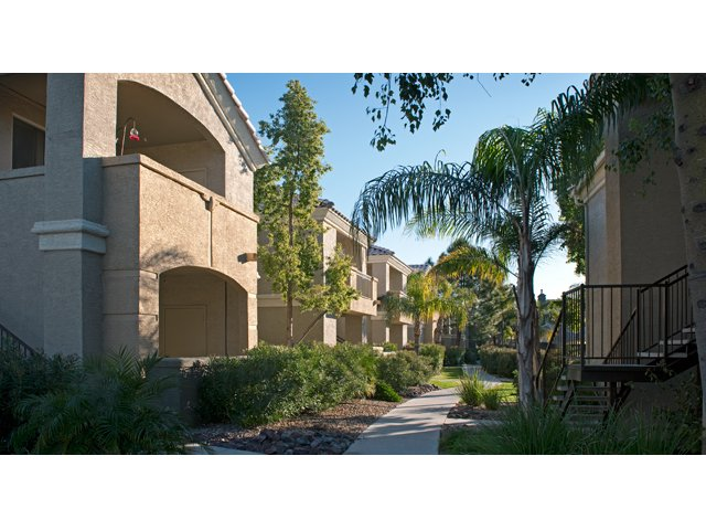 Lumiere Chandler Condos | Apartments For Rent in Chandler, AZ | Courtyard