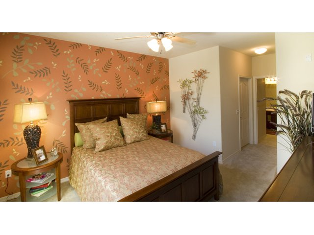 Waterford at Peoria Apartments for Rent in Peoria, AZ | Braewood Bedroom