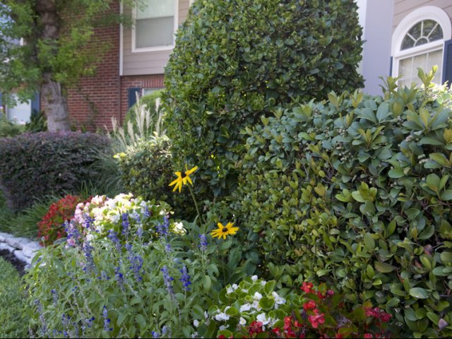 Richmond Green | Apartments for Rent in Houston, TX | Landscaped Flower beds
