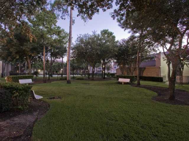 Central Park Regency | Apartments for Rent Cypress, TX | Pet Friendly Courtyard