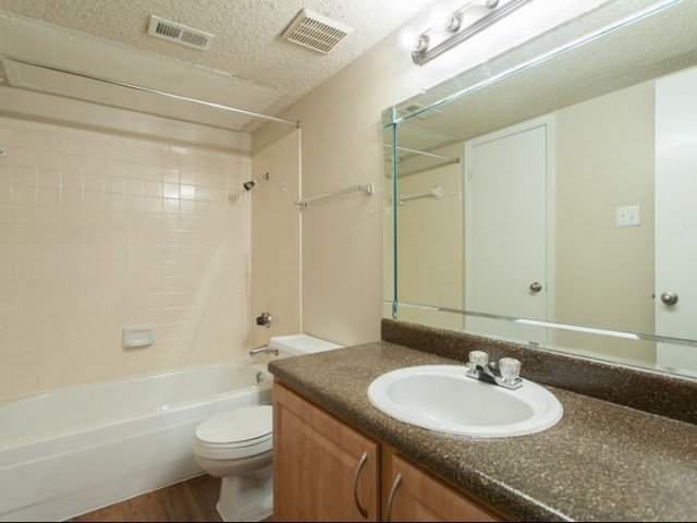 The Parks at Treepoint | Apartments For Rent in Arlington, TX | Bathroom