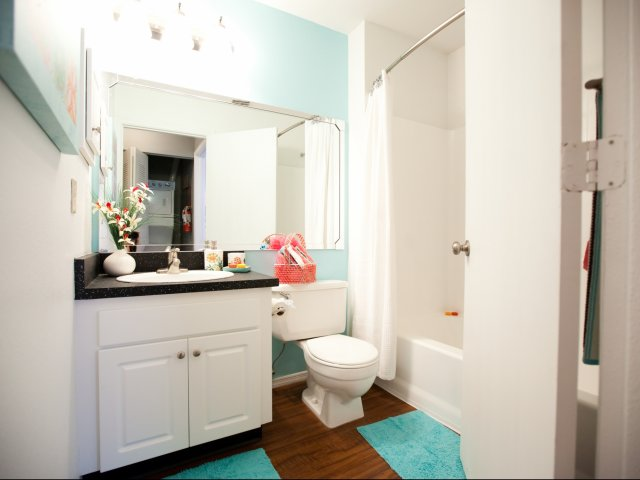 Luxury Casselberry Apartment Rentals | Bathroom