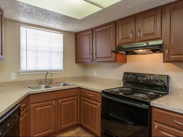 Springfield | Apartments for Rent in Mesquite, TX | Kitchen Cabinets