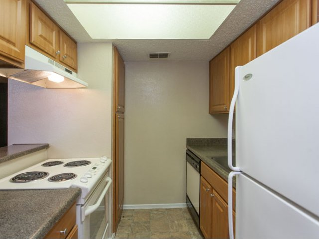 Springfield | Apartments for Rent in Mesquite, TX | Kitchen