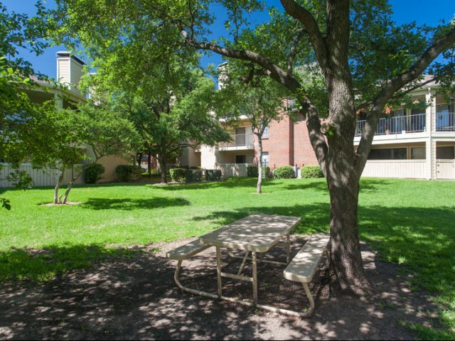 Springfield   Apartments for Rent in Mesquite, TX   Pet Friendly Courtyard