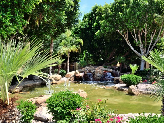 Sierra Foothills | Apartments For Rent in Phoenix, AZ | Exterior Landscaping