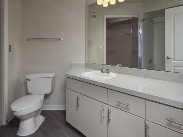 The Summit at MetroWest| Apartments for Rent in Orlando, FL | Bathroom
