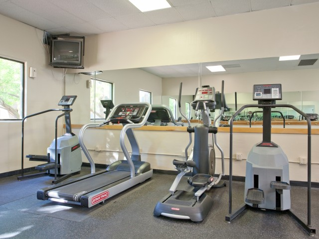 Terra Vida Apartments for Rent in Mesa, AZ | Fitness Equipment