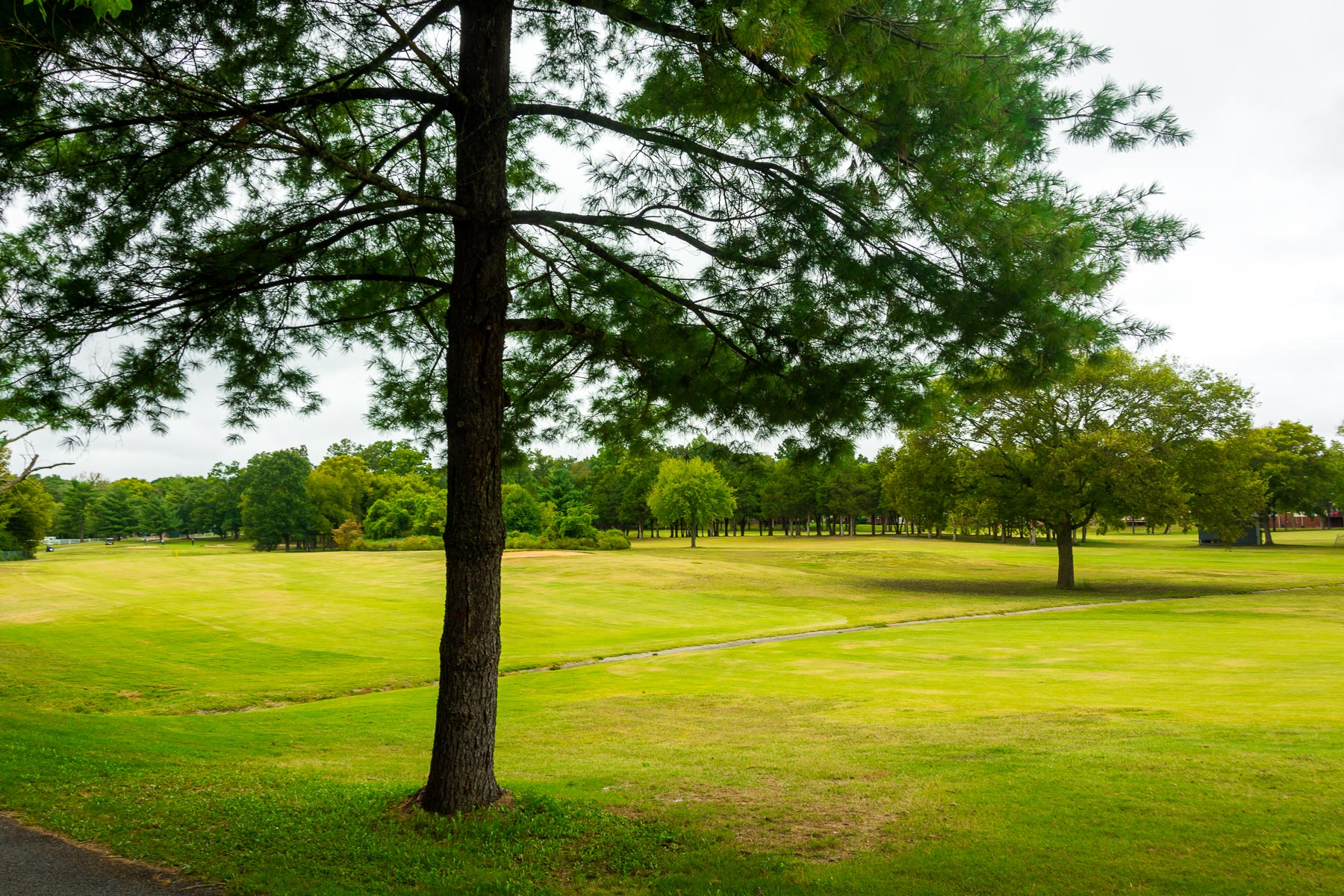 Nashboro Village | Apartments for Rent in Nashville, TN | Views of the Golf Course
